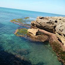ocean and rocky outcrop